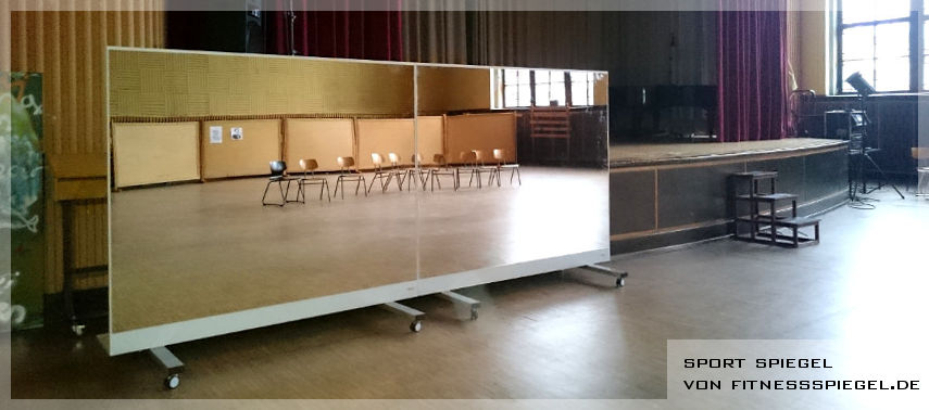 Acquisto online di specchi per balletto e per palestre parete a specchio - Specchi da parete per palestre ...